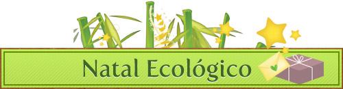 6462154 d54fb33809 o Natal Ecológico   Enfeites