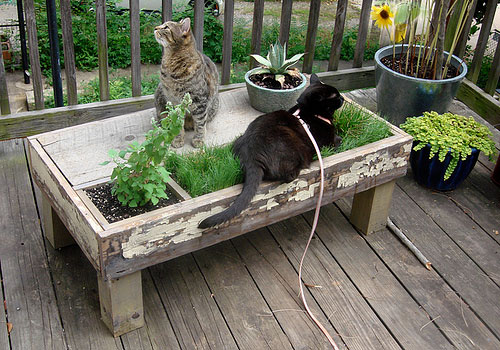 mesahorta 06 3 mesas com plantas embutidas