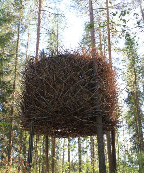 casa arvore 01 Quarto de hotel é um ninho de pássaro na árvore