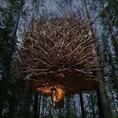 casa arvore 08 Quarto de hotel é um ninho de pássaro na árvore