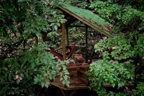 9806175 624567f4ee o O primeiro condomínio de casas na árvore