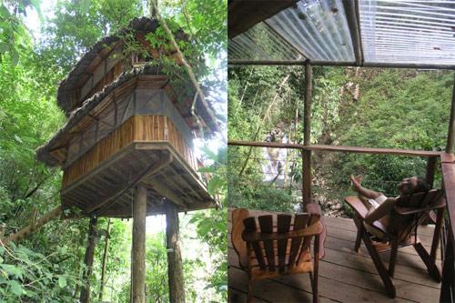 9806178 5e97b542ea o O primeiro condomínio de casas na árvore