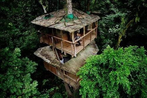 9806179 50eee6185b o O primeiro condomínio de casas na árvore