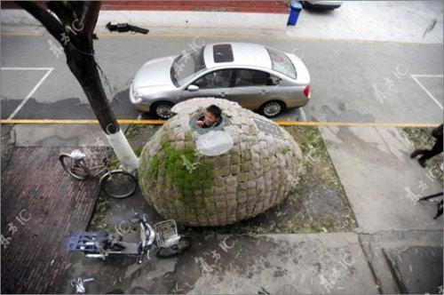 9827158 aad0d3b3d9 o Casa ecológica em forma de ovo