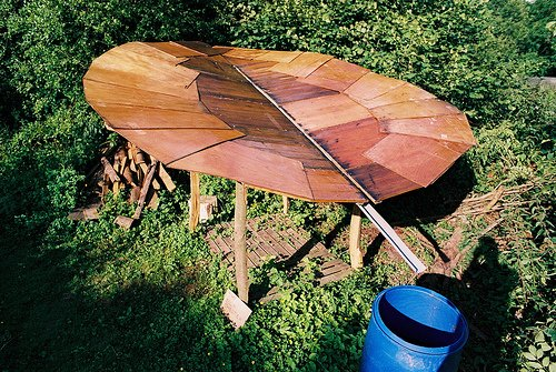 flor madeira coletador agua 1 Folha gigante que coleta água da chuva