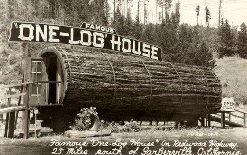 tora casa arvore one log house 1 Uma casa dentro de uma tora de árvore
