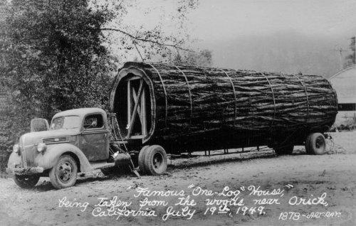 tora casa arvore one log house 4 Uma casa dentro de uma tora de árvore
