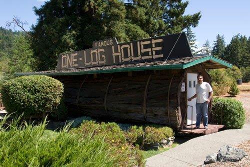 tora casa arvore one log house 5 Uma casa dentro de uma tora de árvore