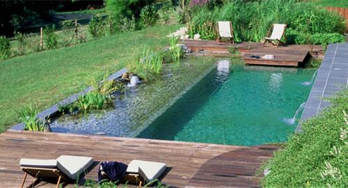 piscina.01 Piscina biológica