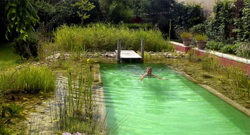 piscina.07 Piscina biológica