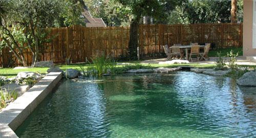 piscina.08 Piscina biológica