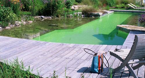 piscina.10 Piscina biológica