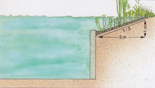 piscina.18 Piscina biológica
