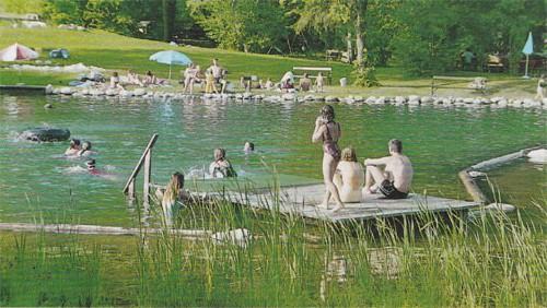 piscina.19 Piscina biológica