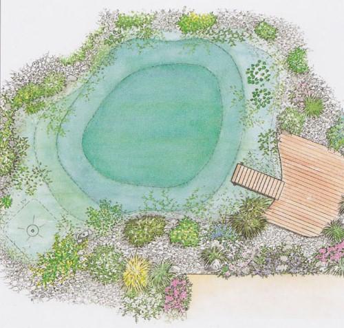 piscina.21 Piscina biológica