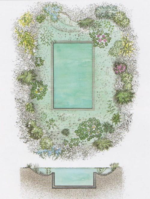 piscina.25 Piscina biológica