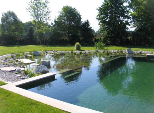 piscina.33 Piscina biológica