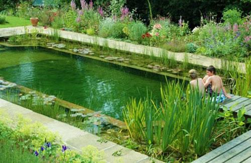 piscina.34 Piscina biológica