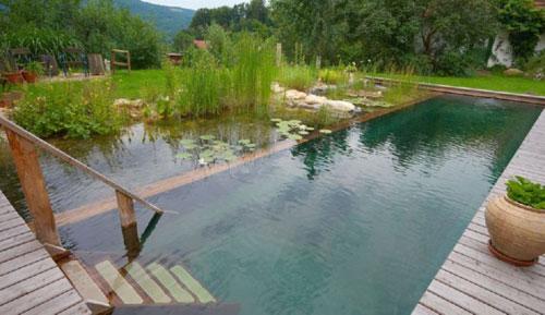 piscina.35 Piscina biológica