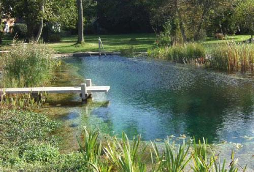 piscina.36 Piscina biológica