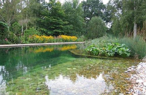 piscina.39 Piscina biológica