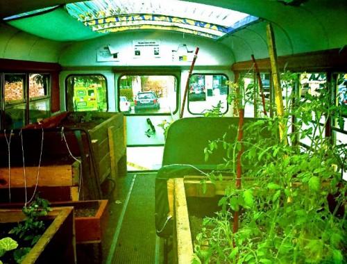 onibus jardim 02 500x380 Jardins e hortas em ônibus
