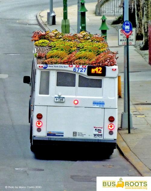 onibus jardim 05 500x633 Jardins e hortas em ônibus