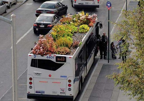 onibus jardim 06 500x352 Jardins e hortas em ônibus