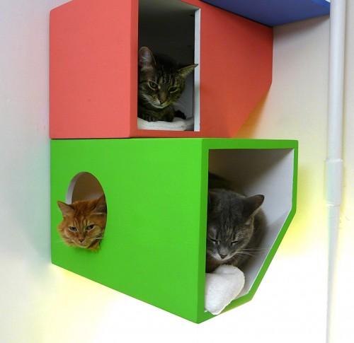 gato moderno 04 500x485 Cantinho dos gatos modernos