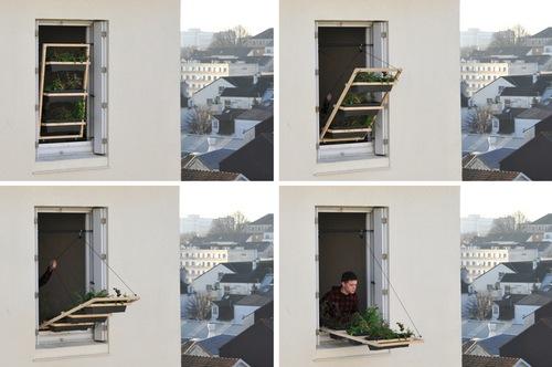 horta janela 01 Tá faltando espaço para fazer uma horta?