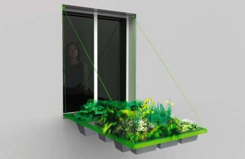 horta janela 04 Tá faltando espaço para fazer uma horta?